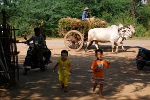 www.dowietnamu.pl_birma097