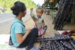 Laos-dowietnamu.pl-1-targ