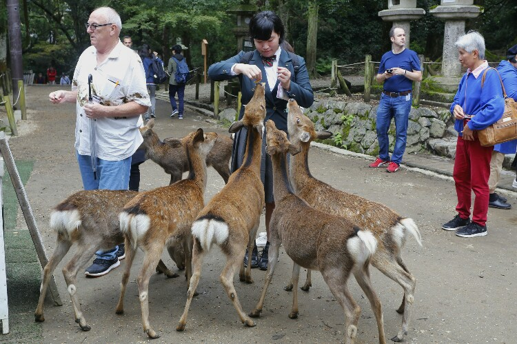 Park Nara