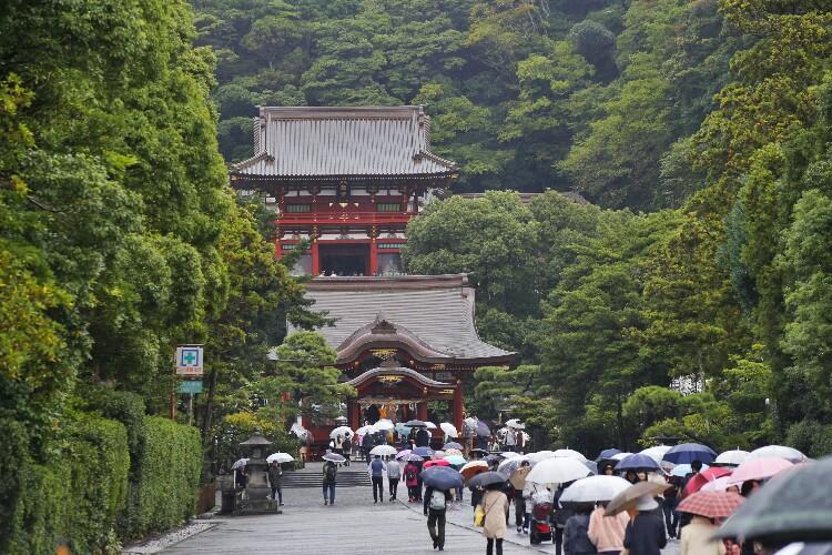 Tsurugaoka Hachiman-gu w Kamakurze