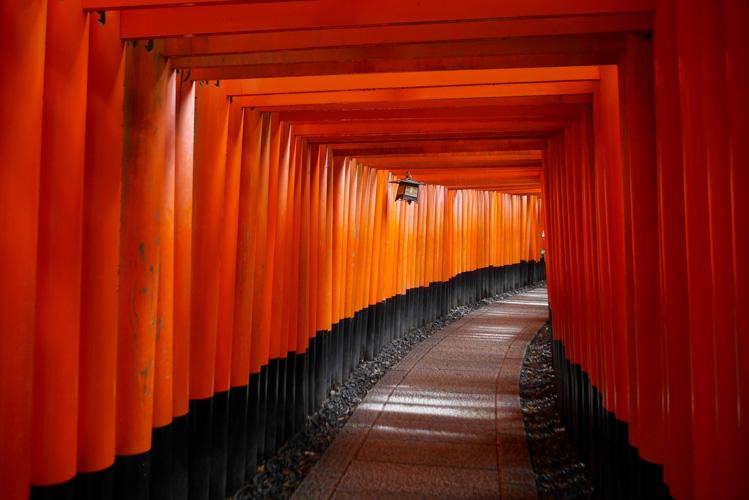 Brama Torii w Kioto