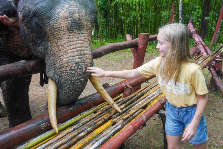 Obóz słoni - Birma