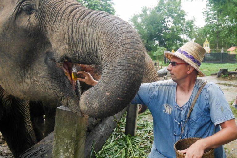 Obóz słoni - Tajlandia