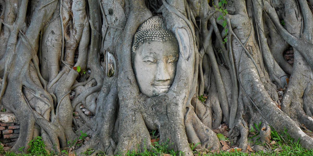 Głowa w Ayutthaya