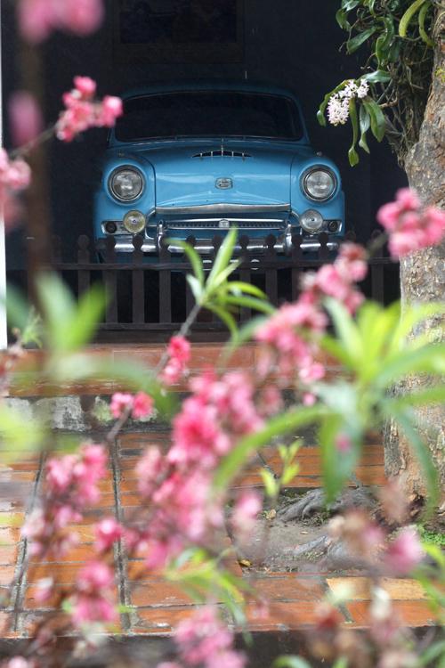Błękitny Austin w Thien Mu