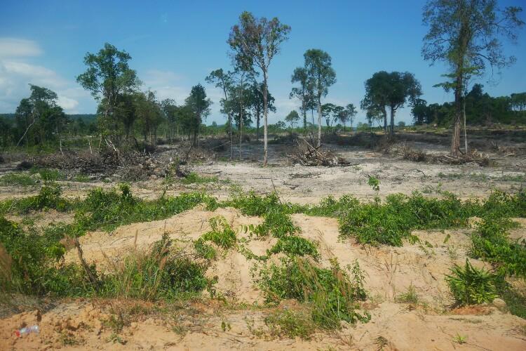 Ream Park w Kambodży