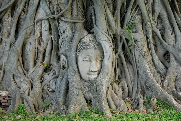 świątynia Wat Maha That