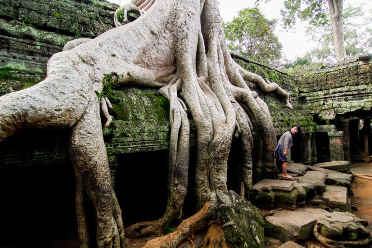 Ta Prohm w Kambodży