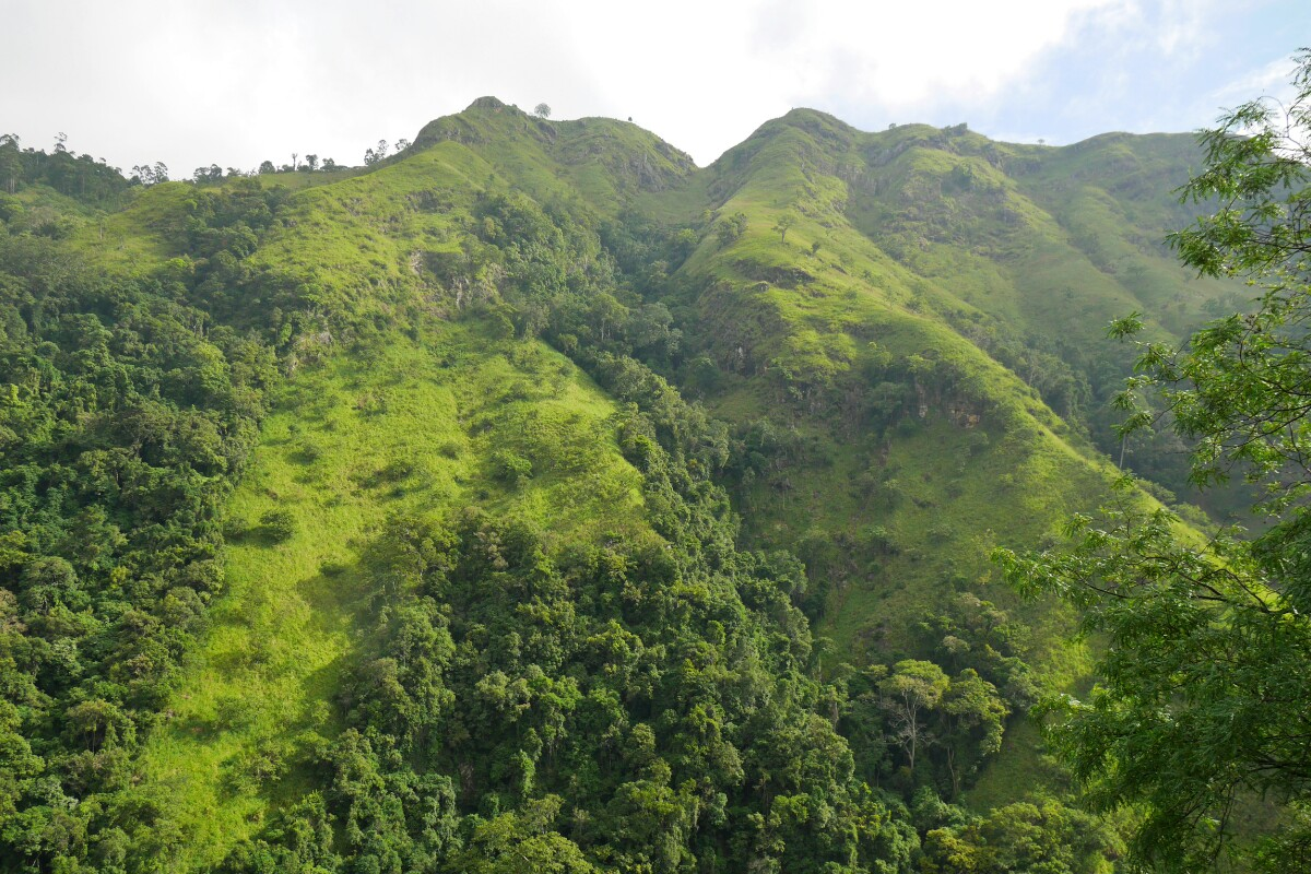 góry w Ella na Sri Lance