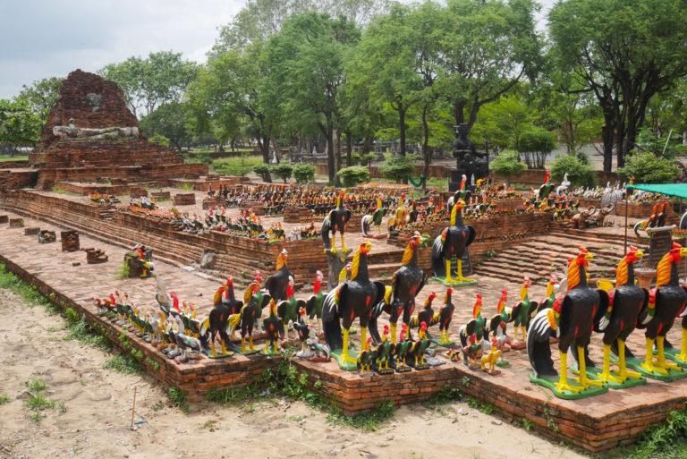 świątynia Wat Thammikarat