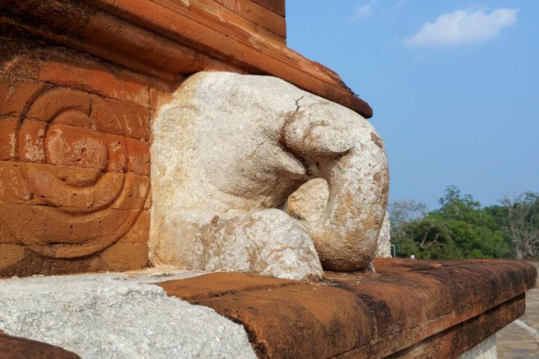 Głowa słonia na vahalkadzie