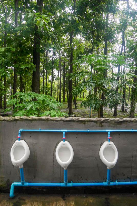 Toaleta w Parku Narodowym Sri Lanna