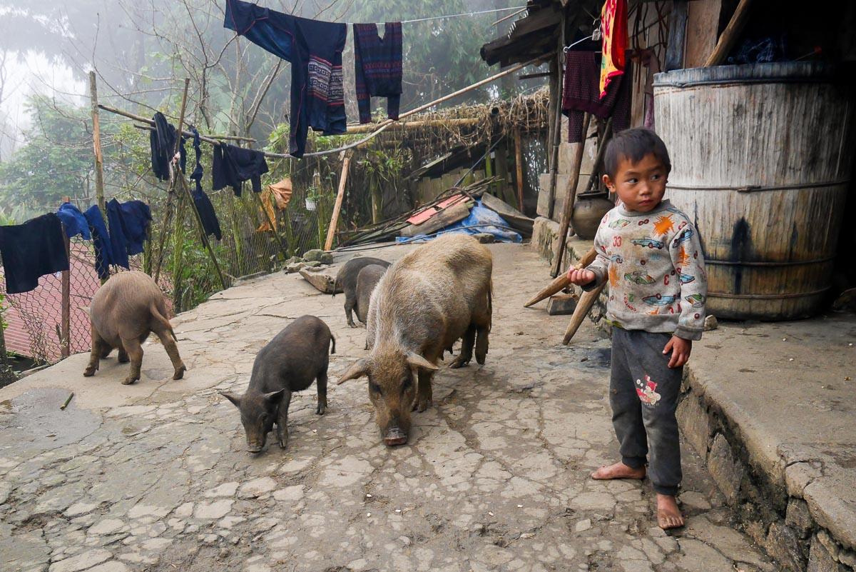 Północny Wietnam