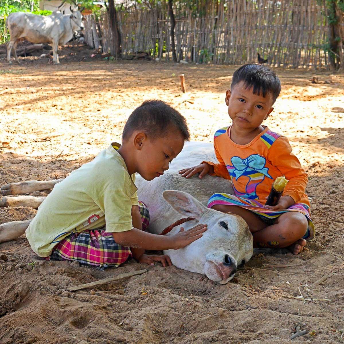Wieś niedaleko Bagan