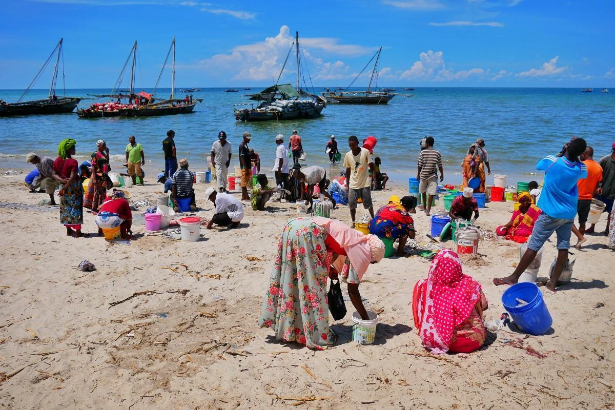 Rybacy wrócili z morza