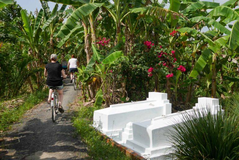 Groby przy ścieżce w Delcie Mekong
