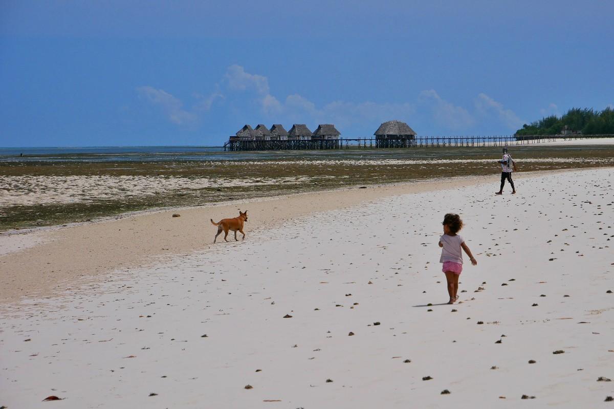 Odpływ na Zanzibarze