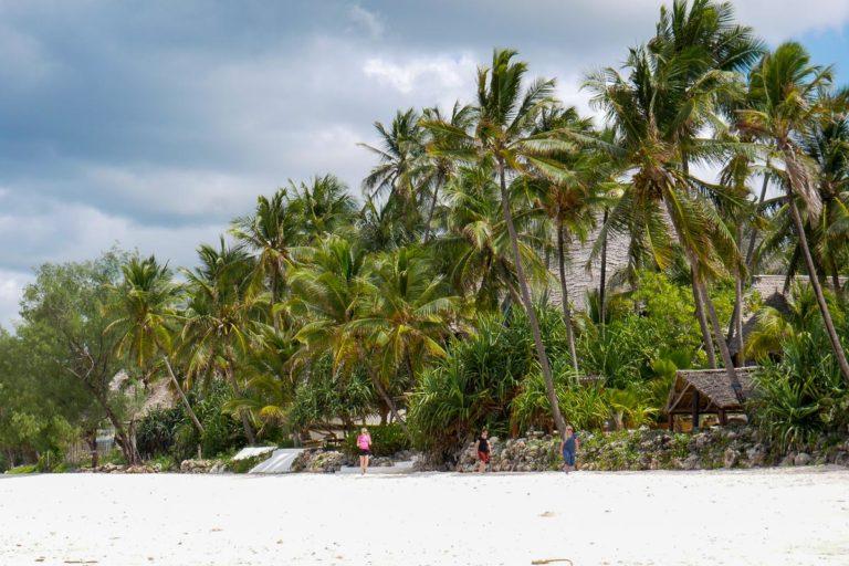 Plaża we wschodniej części Zanzibaru