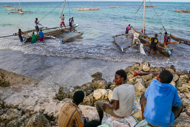 Rybackie łodzie. Zanzibar