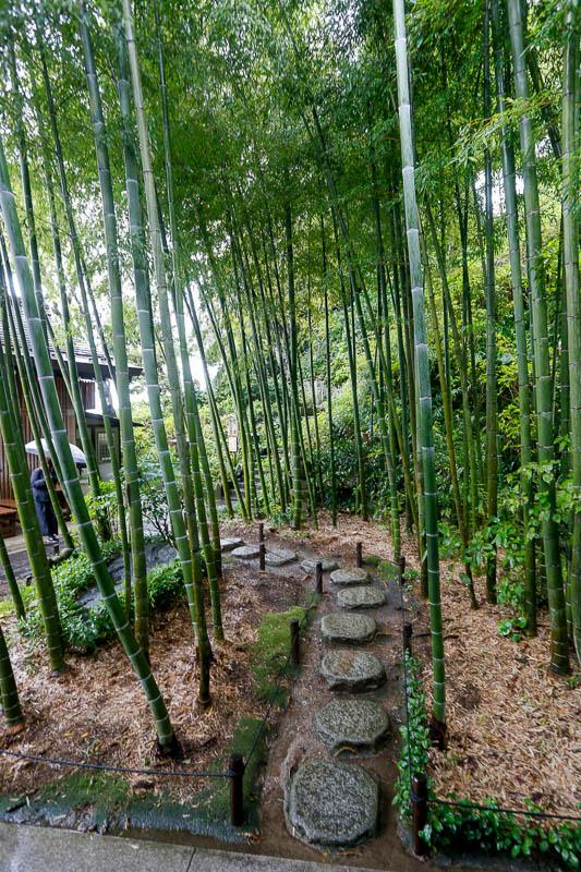 Przy wielu japońskich świątyniach znajdują się bambusowe zagajniki. Na zdjęciu świątynia Hasedera w Kamakurze